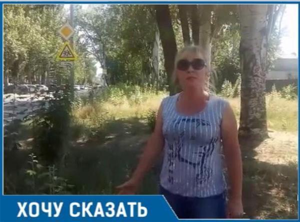 Амброзия у школы №24 в Таганроге  разгневала горожанку, на детской площадке по ул. Свобода такая же история