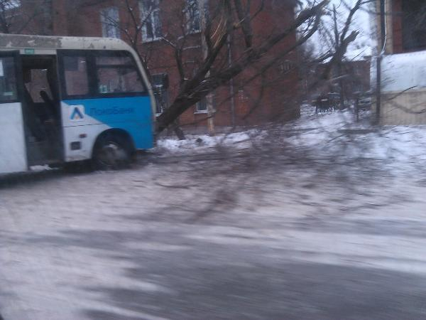 ВТаганроге маршрутка №13 врезалась вдерево, есть пострадавшие