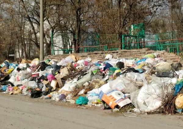 В Таганроге жители микрорайона выносят мусор к храму