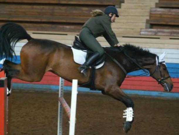 Этап конно-спортивного марафона «Кубок Победы» прошел в Таганроге