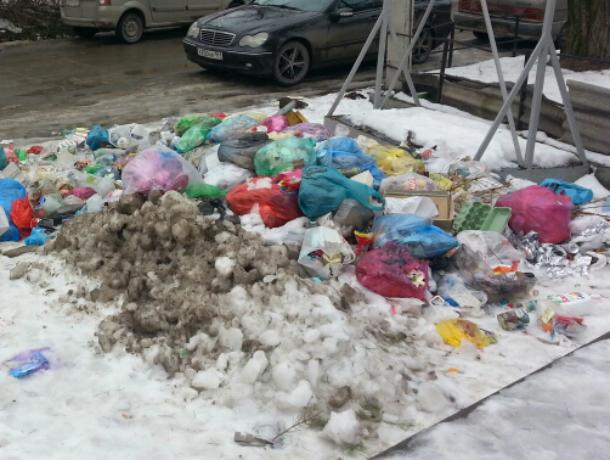 Таганрожцы не спешат заключать договора  по вывозу мусора с «Экотрансом»