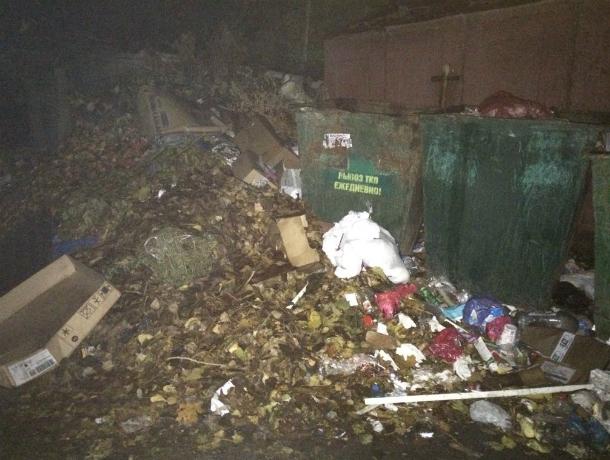 Кучи мусора выше гаражей  выросли на улице Седова в Таганрога