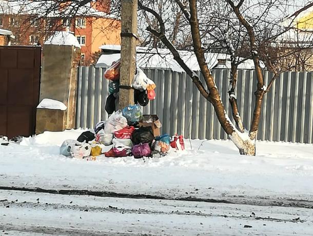 Вывоз мусора Экотрансом в Таганроге вызывает много нареканий  и жалоб