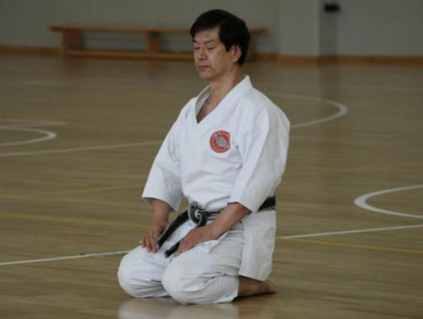 Легенда из Японии проведет семинар по каратэ в Таганроге