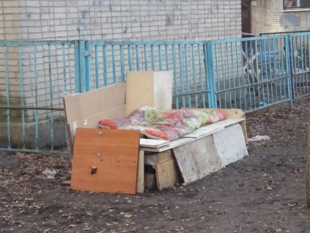 Таганрожцы просят помощи — сердобольные бабушки прикармливают бездомных собак и кошек
