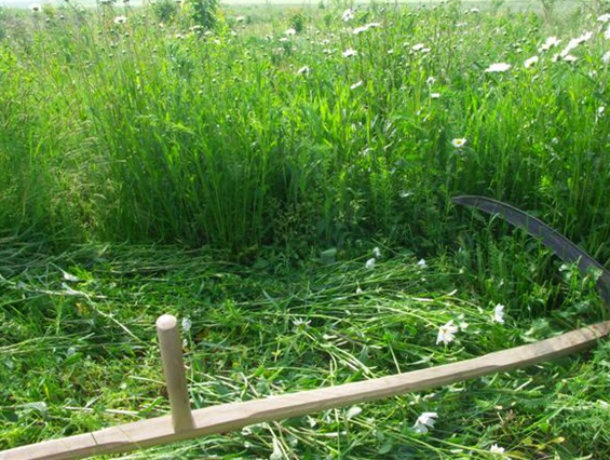За нарушение правил благоустройства к ответственности  привлечено  ООО «Таганрогское ДСУ»