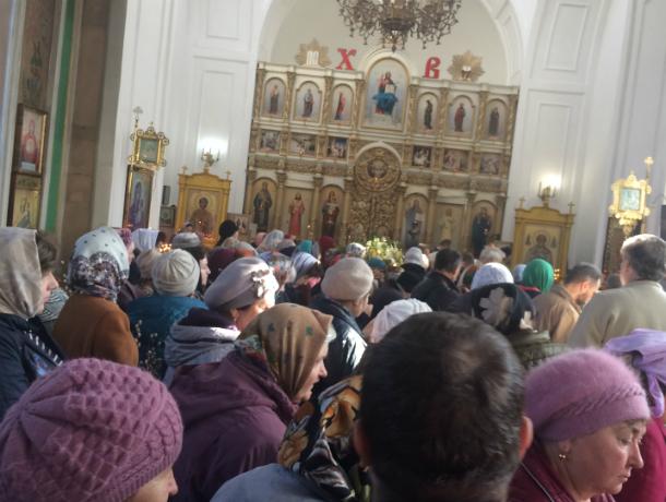 Сегодня православные таганрожцы отмечают  Вербное воскресенье
