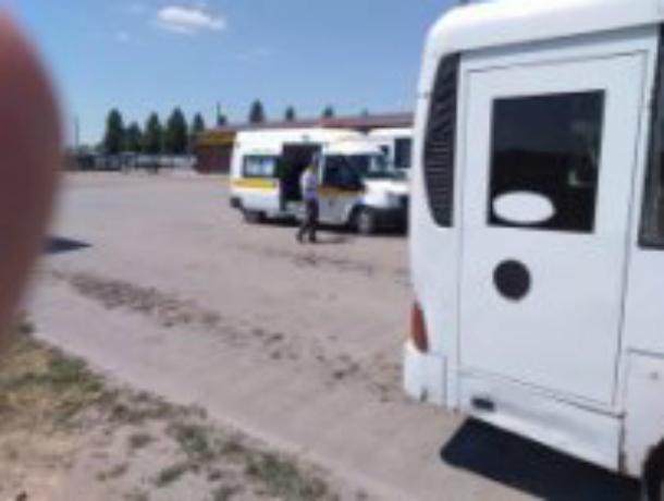 Вчера появилась надежда, что на транспорте Таганрога наведут порядок