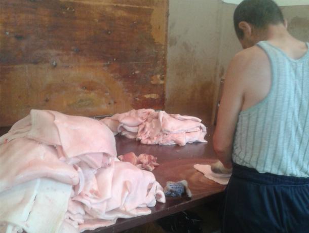 Подпольный цех по производству свиной продукции выявлен   в Таганроге