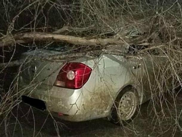 Два автомобиля пострадали от стихии в Таганроге