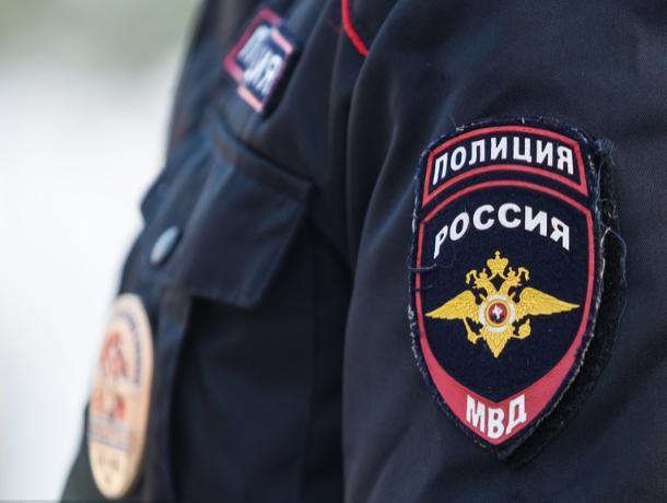 Полиция Таганрога не желает иметь дело с живодерами