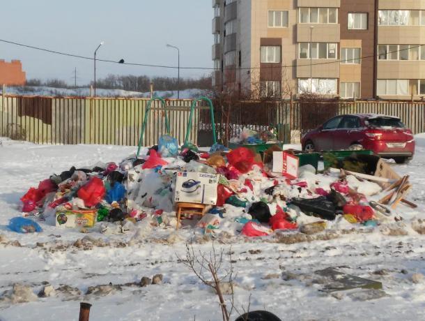 Самым замусоренным городом области оказался Таганрог