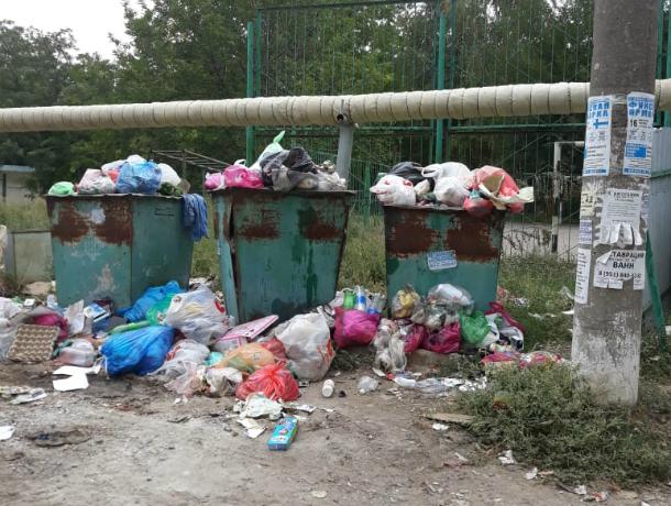 Жительница Таганрога с улицы Б.Хмельницкого призывает власти убрать мусор