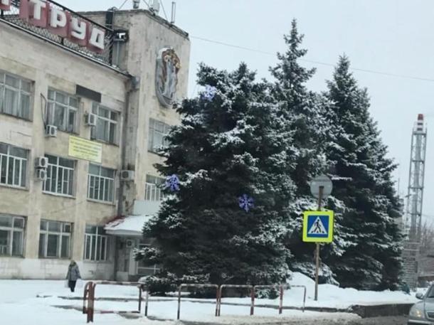 В Таганроге объявился похититель Нового года: праздничная елка лишилась макушки