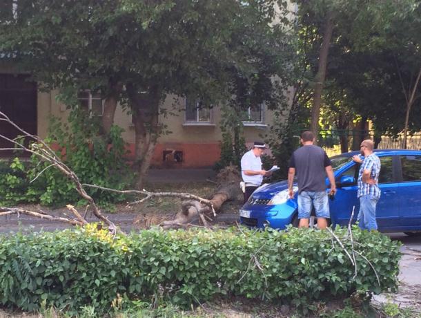 Ураган принес беды в Таганрог