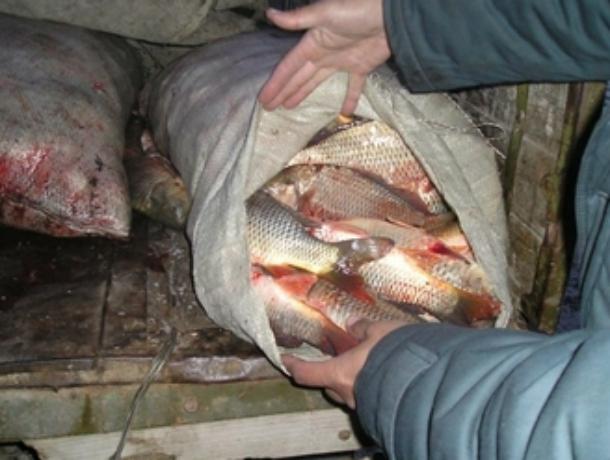 Любитель браконьерить получил год исправительных работ и полмиллиона штрафа