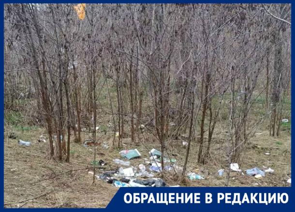 Театр начинается с вешалки, а Таганрог с засыпанных мусором  ж/д путей, что ведут к Новому вокзалу