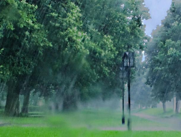 Погода в Таганроге на следующей неделе будет дождливой