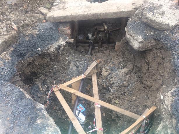 Приют для кошек устроили коммунальщики в ямах Таганрога