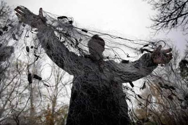 В Таганроге амнистированный браконьер заплатит штраф за тарань и судака