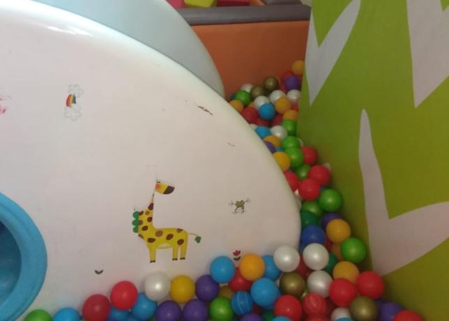 Ужасные впечатления таганроженке оставил после себя детский игровой центр
