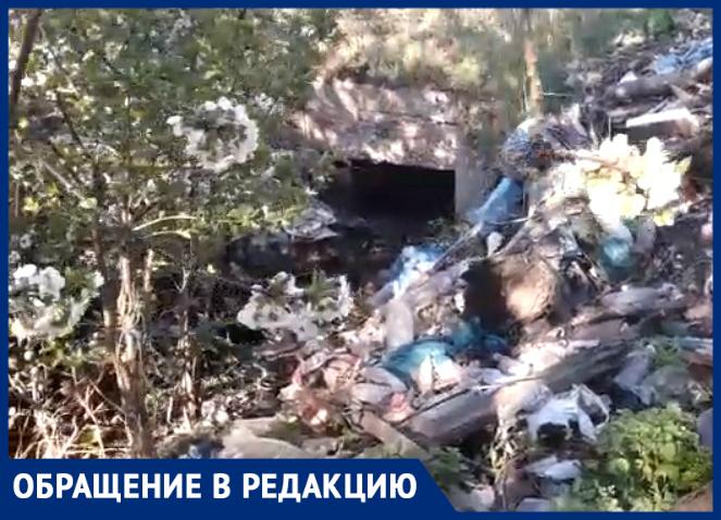 Кто уберет ливневку в Таганроге - туда давно не ступала нога уборщика мусора