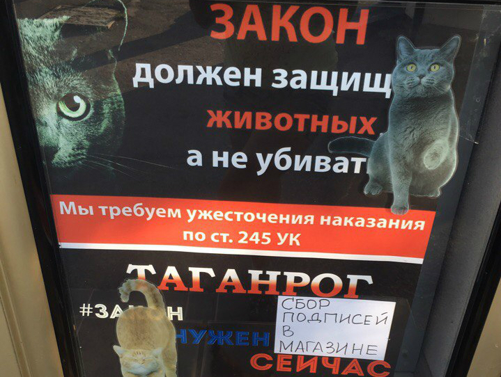 В Таганроге собирают подписи под коллективным обращением к Путину