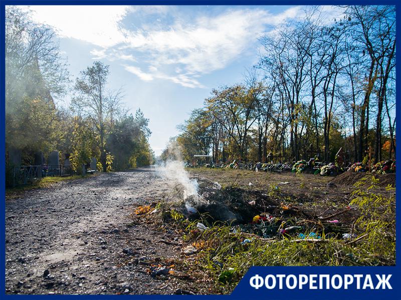 На Николаевском кладбище в Таганроге рубят деревья, говорят по закону