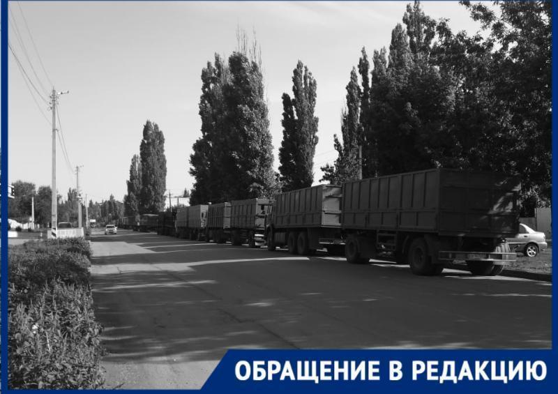 Таганрожцев раздражает караван зерновозов, поселившихся у Пушкинской набережной