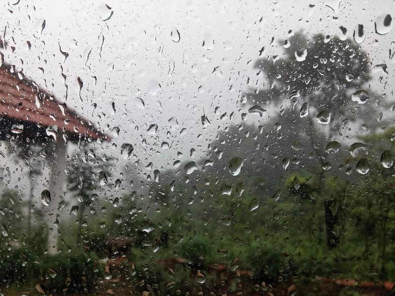 Погода таганрожцев не балует:на предстоящей неделе будет дождливо и облачно