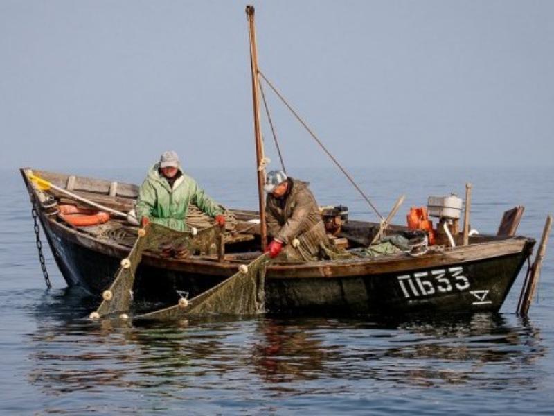 Рыбный промысел в Таганрогском заливе оказался под угрозой