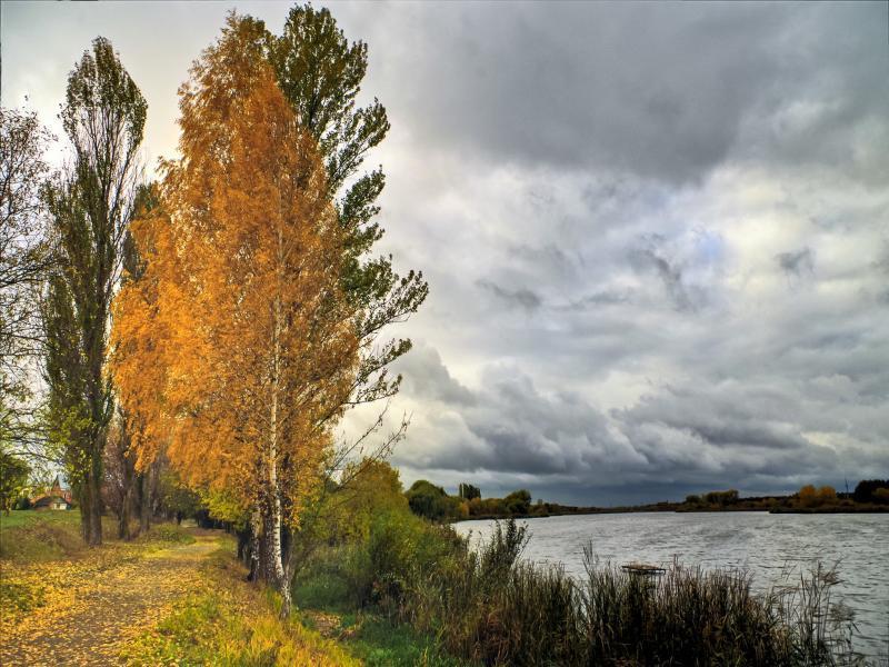 Погода в Таганроге: всю рабочую неделю будет облачно и пасмурно