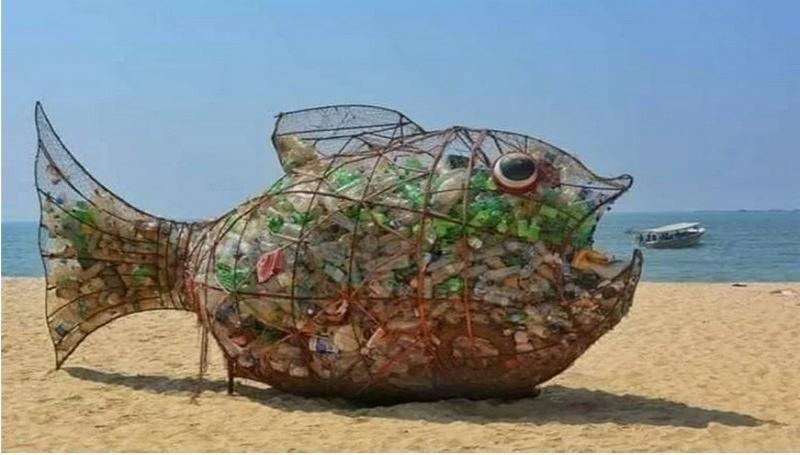Необычная рыба появится скоро в Таганроге