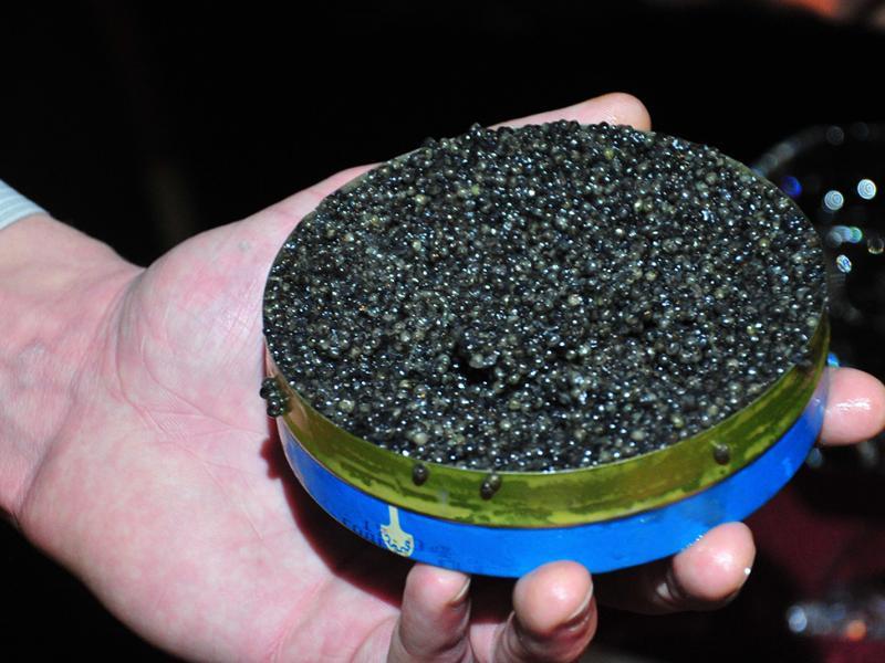 Продающий черную икру таганрожец лишился 500 тысяч