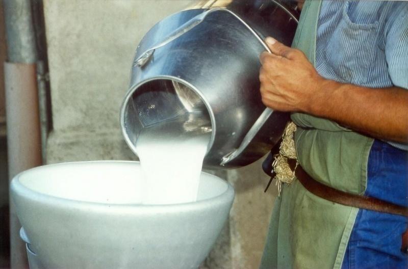 В Неклиновском районе задержали нелегальное молоко
