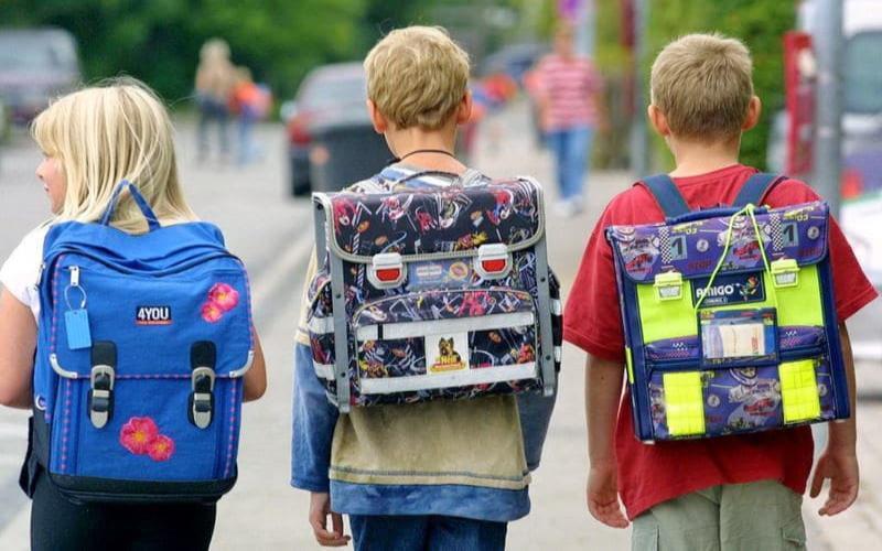 Роспотребнадзор рассказал таганрожцам как выбрать правильный ранец для школьника