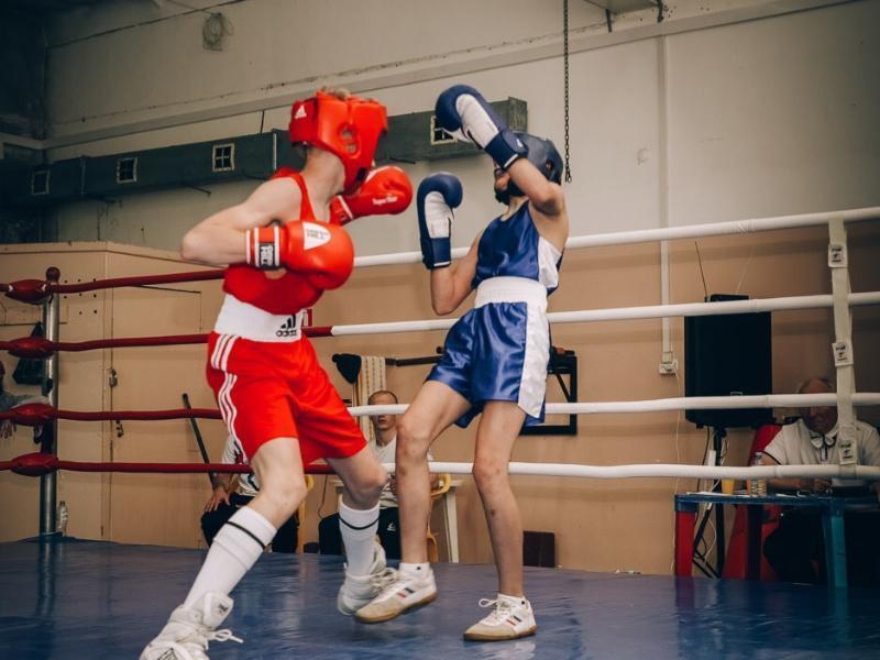Таганрожцы заняли весь пьедестал почета городского Кубка по боксу