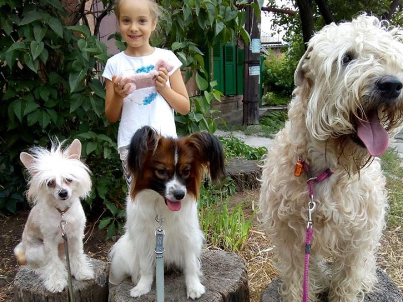 Таганроженка призывает горожан убирать за своими собаками