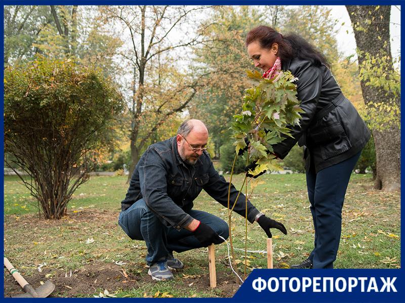 В Таганроге прошла экологическая акция «День древонасаждения»