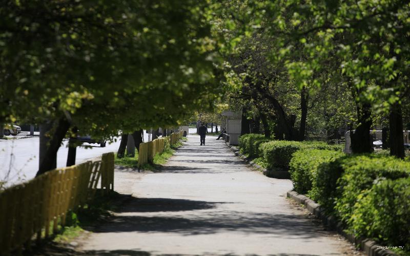 Теплая осень продолжится в Таганроге на следующей рабочей неделе