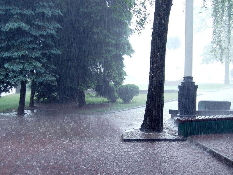 Дождливая погода ждет таганрожцев на выходные