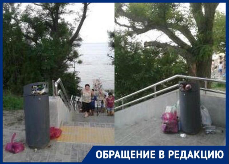 Новые урны в Приморском парке не вмещают мусор — территория превращается в свалку