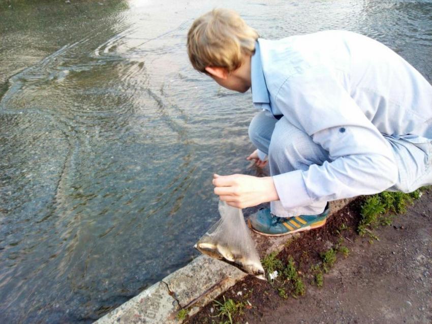 рыболовный таганрог