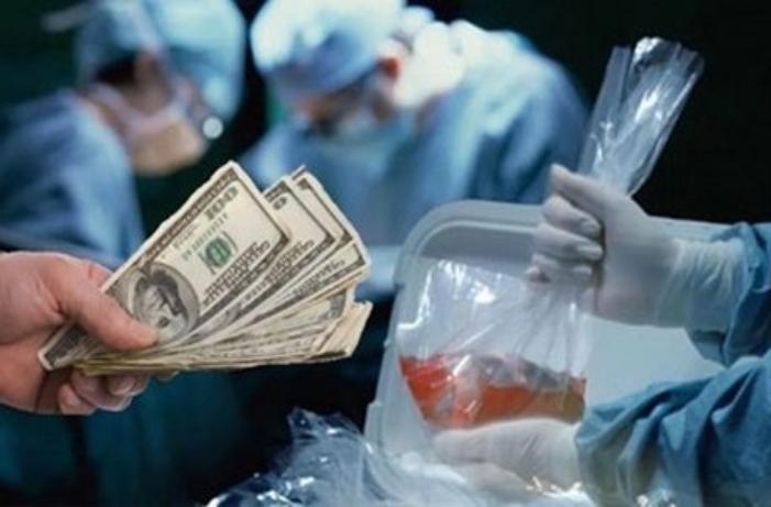 Осудили таганрожцев, попытавшихся продать знакомого на органы