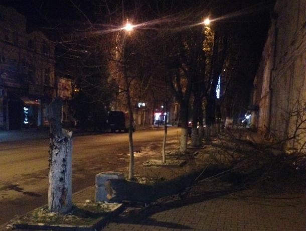 Сбитое «насмерть» лихим водителем ВАЗа дерево едва не придавило прохожего с ребенком в Таганроге