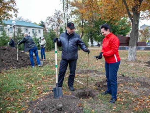 Руководители  Таганрога славно поработали в День древонасаждений