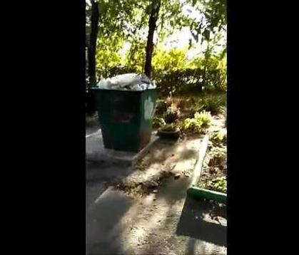 Дом – объект культурного наследия Таганрога, погряз в мусоре и зловониях