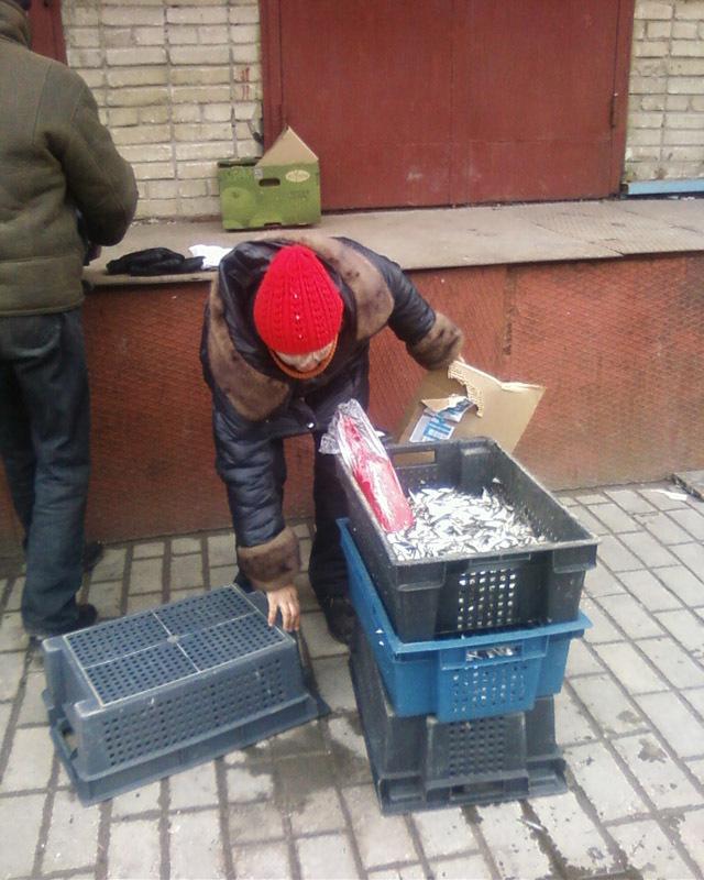 В Таганроге пресекли факты несанкционированной продажи рыбы