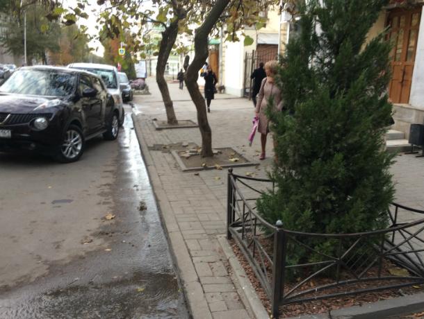 Новый родник возник в центре города из-под таганрогского асфальта